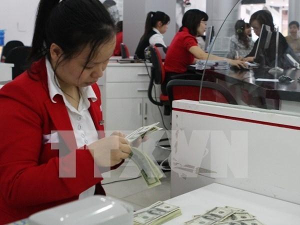 越南国家银行下调美元存款利率有利于防美元化现象 hinh anh 1