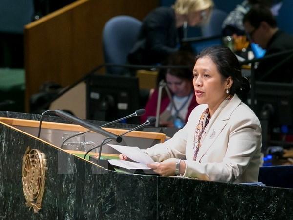 阮芳娥大使:越南注重以人为中心尊重和保障人权 hinh anh 1