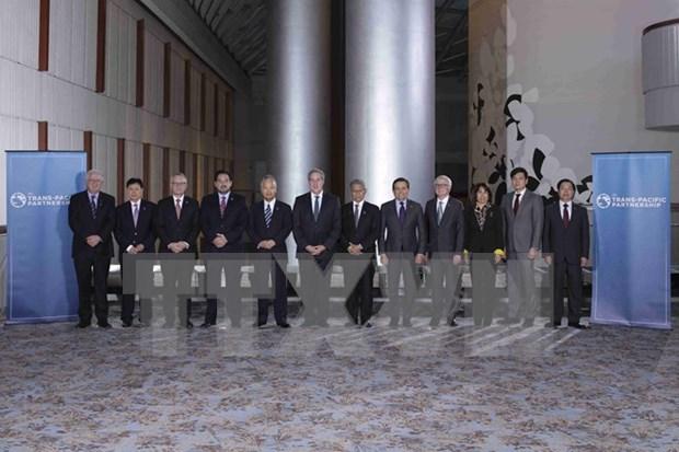TPP谈判延长 hinh anh 1