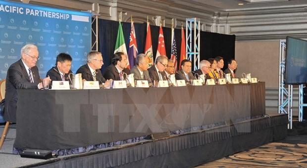 《跨太平洋伙伴关系协议》谈判结束 hinh anh 1