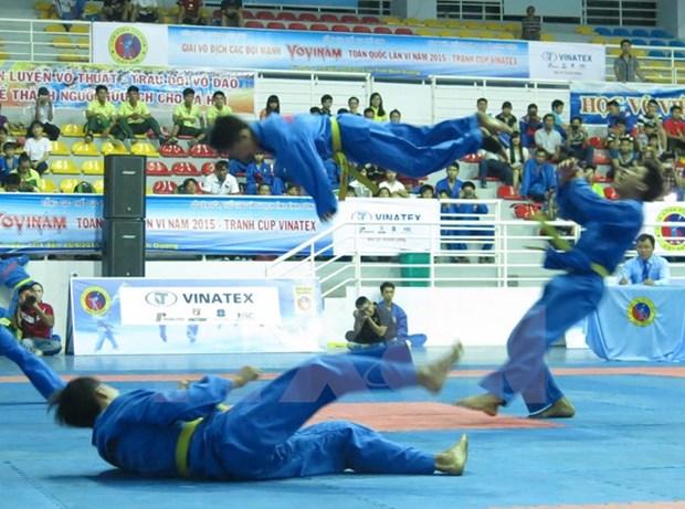 2015年第23届越武道锦标赛在清化省开赛 hinh anh 1