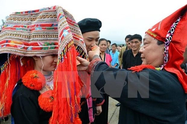 越南政府总理批准2016-2020年阶段性别平等国家行动计划 hinh anh 1