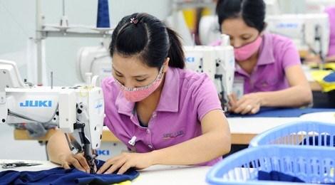 越南是从《跨太平洋伙伴关系协定》受益最多的国家 hinh anh 1