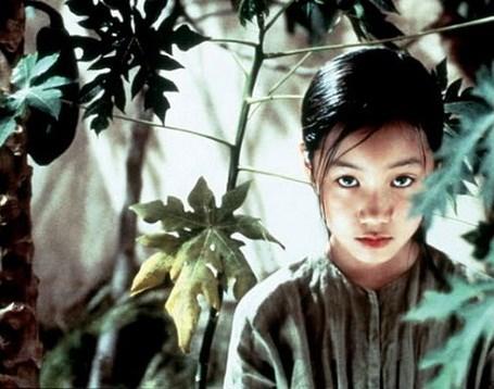 法国越裔导演电影《青木瓜香味》跻身亚洲百大影片 hinh anh 1