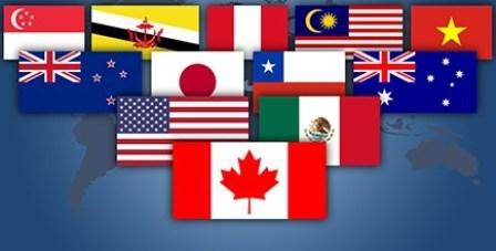 TPP为越南经济发展带来机遇 hinh anh 1