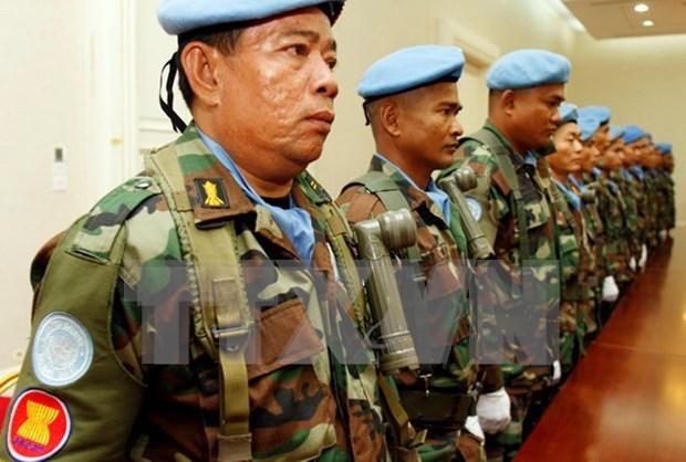 东盟维和力量高级官员在柬埔寨会晤分享相关经验 hinh anh 1