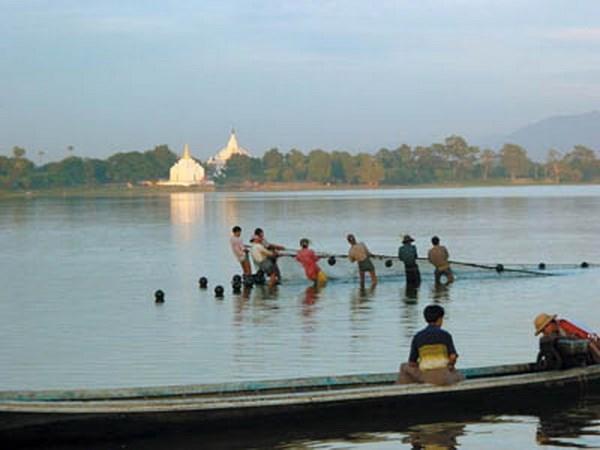 欧盟资助缅甸促进水产养殖业发展 hinh anh 1
