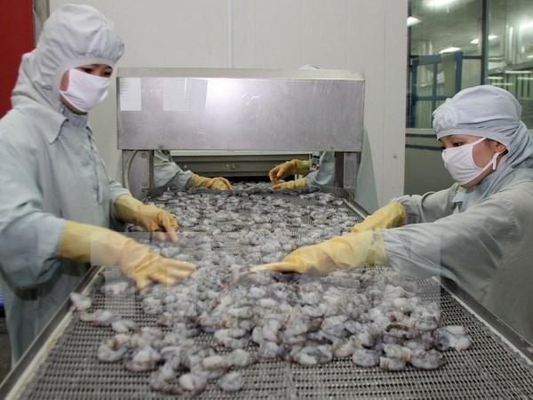 2015年后几个月越南对美国的虾类出口将有所起色 hinh anh 1