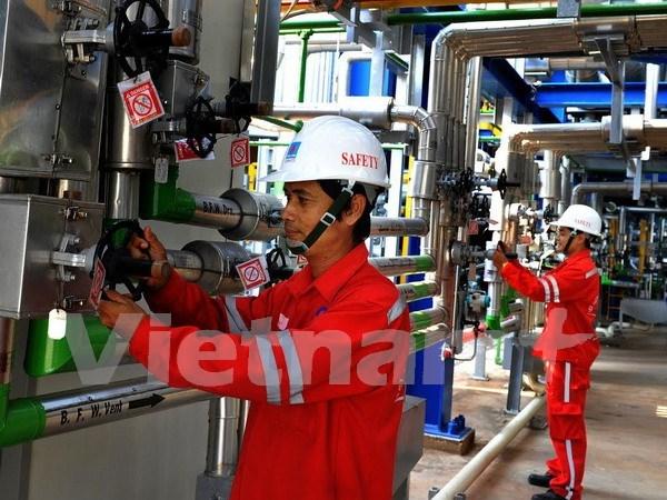 仁泽热电厂与国家电网并网发电量达到200亿千瓦时大关 hinh anh 1