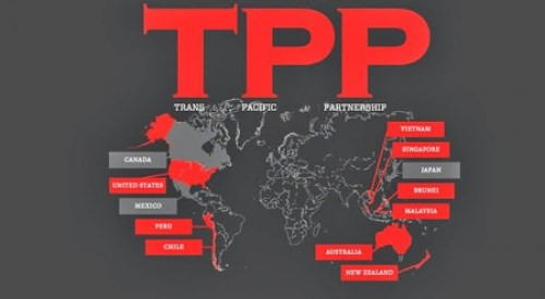 TPP—区域合作的新动力 hinh anh 1
