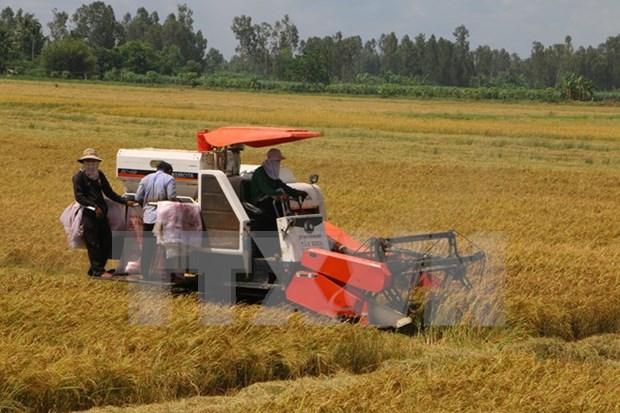 越南国会主席阮生雄出席2015年全国优秀农民表彰会 hinh anh 1