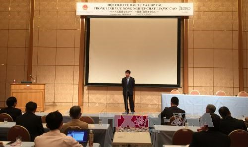 越南与日本促进高质量农业领域的合作 hinh anh 1
