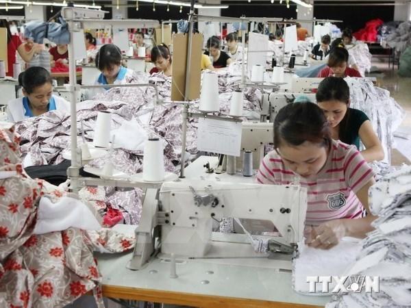 越南美国商会执行主席斯特考夫:TPP创造平等合作环境 hinh anh 1