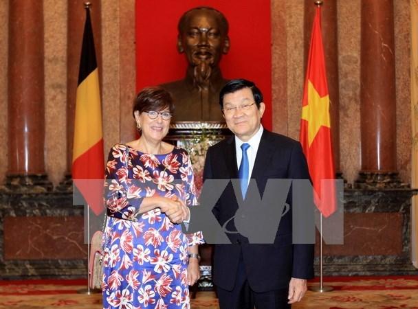 越南国家主席张晋创接见各国新任驻越大使 hinh anh 1