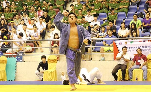 2015年越南国际柔道锦标赛:越南队居首位 hinh anh 1