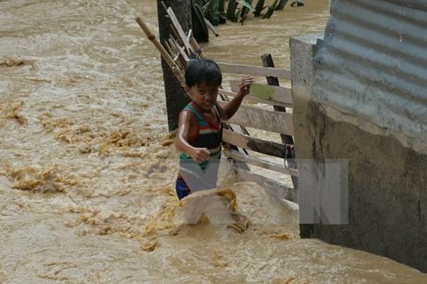 """超强台风""""巨爵""""侵袭菲律宾致使22人死亡农业严重受损 hinh anh 1"""