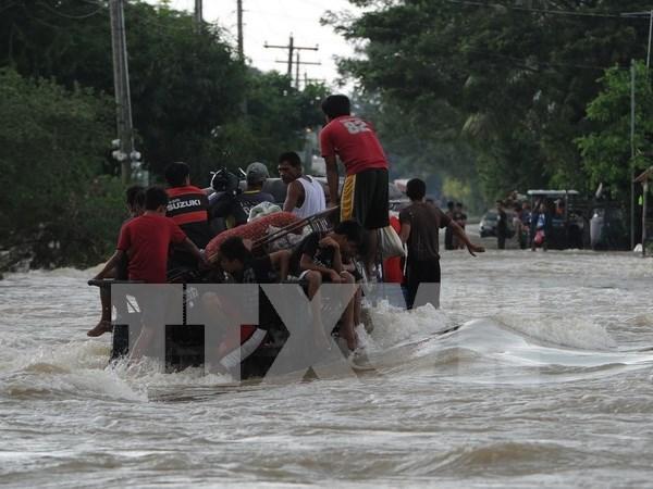 """菲律宾:超强台风""""巨爵""""造成死亡人数上升至47人 hinh anh 1"""