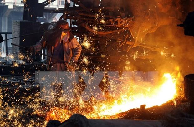 今后两年越南钢铁业增长可达12% hinh anh 1