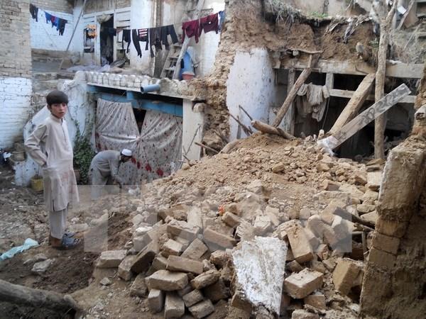 南亚地区大地震:越南高度关注在南亚国家越南公民安危 hinh anh 1
