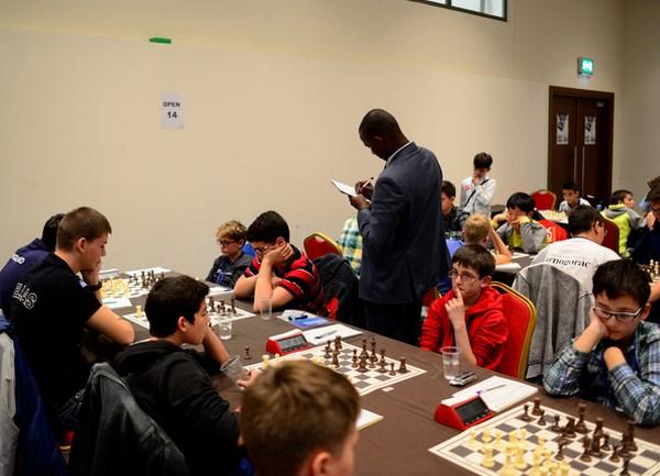 2015年世界青少年国际象棋锦标赛:10名越南棋手获胜 hinh anh 1