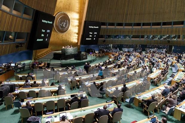 越南欢迎世界各国投票支持联大要求美国终止对古巴制裁的决议 hinh anh 1