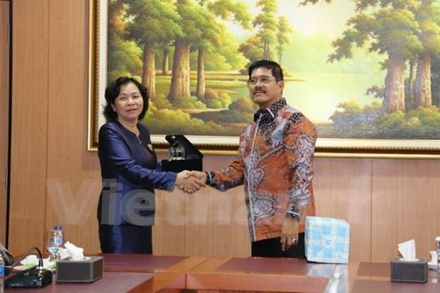 越南与印尼加强司法领域合作 hinh anh 1
