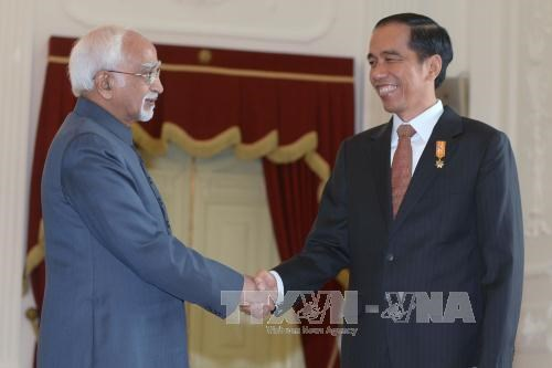 印度与印尼签署多项双边合作协议 hinh anh 1