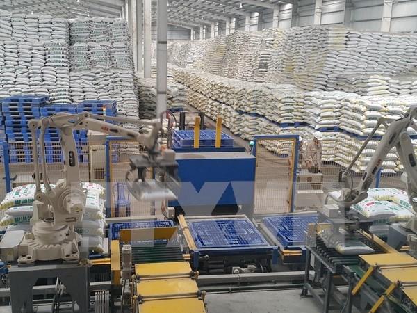 越南西北地区最大化肥厂在老街省落成 hinh anh 2