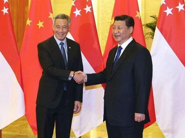 新加坡与中国加强双边关系和拓展东盟—中国合作 hinh anh 1