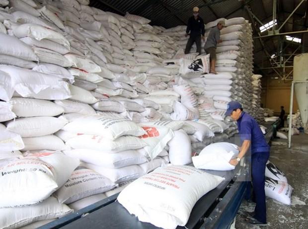 今年前10个月越南大米出口额达22.6亿美元 hinh anh 1