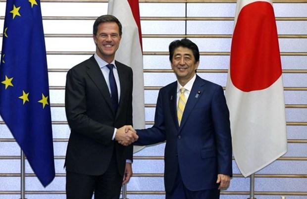 日本与荷兰对东海紧张局势升级表示关切 hinh anh 1