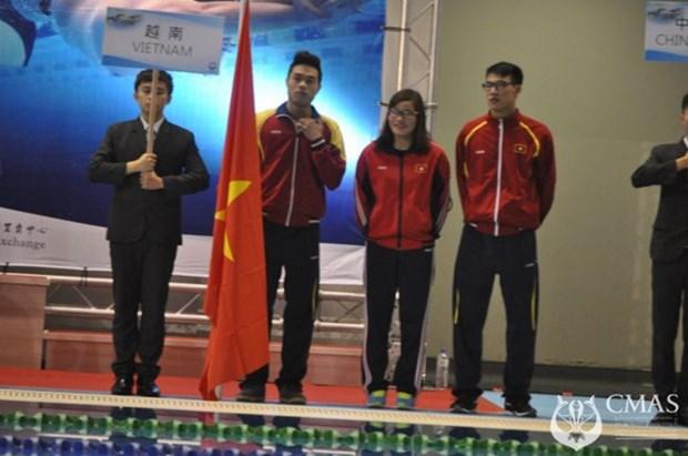 2015年亚洲潜水锦标赛:越南体育代表团位居第三 hinh anh 1
