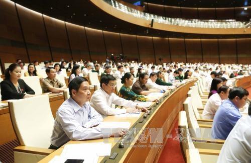 越南国会通过2016-2020年阶段国家目标计划投资主张的决议草案 hinh anh 2