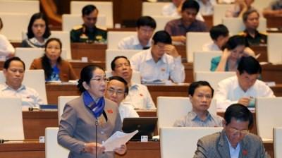 越南第十三届国会第十次会议发表第十七号公报 hinh anh 1