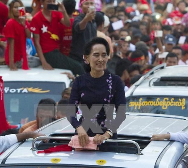 缅甸大选结果:缅甸全国民主联盟赢得下议院196席 hinh anh 1