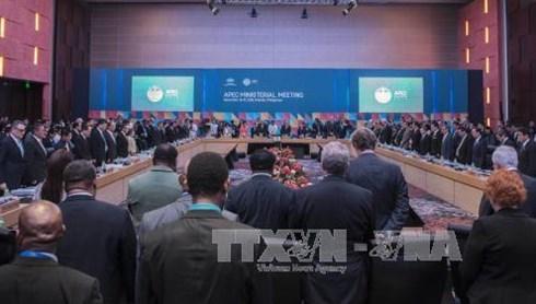 APEC外交与贸易双部长会议在菲律宾举行 hinh anh 1