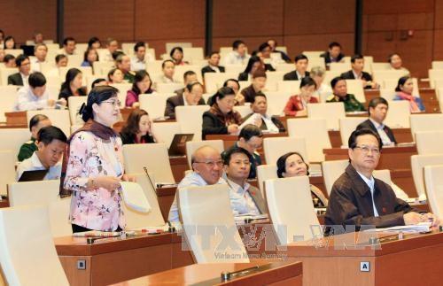 全国选民高度评价国会质询和回答质询活动新形式 hinh anh 1