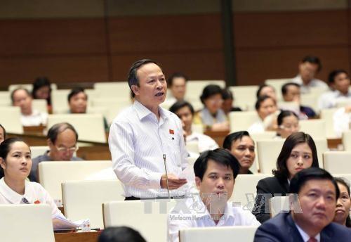 越南第十三届国会第十次会议:各位部长就许多热点问题回答国会代表质询 hinh anh 1