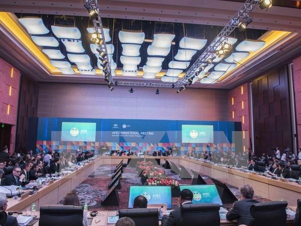 越南主动全面融入国际社会为APEC合作作出积极贡献 hinh anh 1