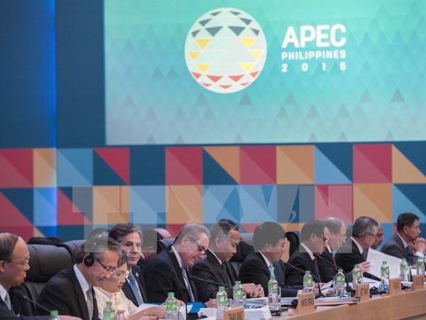 第27届亚太地区经合组织外交与经贸双部长会议圆满结束 hinh anh 1