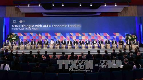 张晋创主席继续出席2015年APEC峰会系列活动 hinh anh 1
