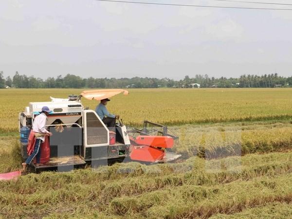 委内瑞拉正式批准与越南的农业合作协议 hinh anh 1