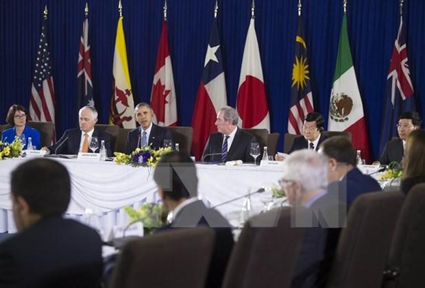 TPP十二个成员国领导人重申及早推动TPP得以实施的强烈决心 hinh anh 1