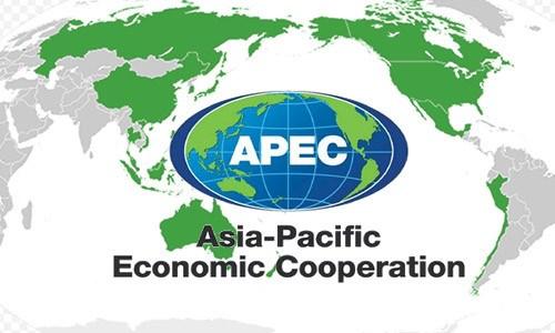 亚太经合组织经济一体化进程中面临的挑战 hinh anh 1