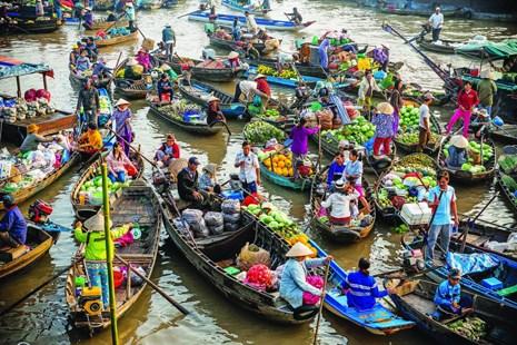 2015年初至今芹苴市接待游客量达140万人次 hinh anh 1