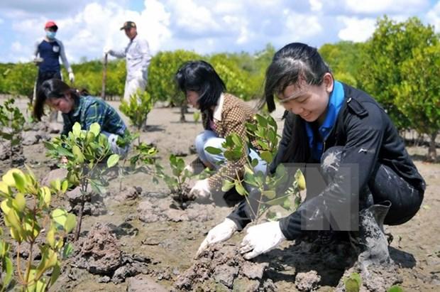 欧盟鼓励越南提高环保目标 hinh anh 1