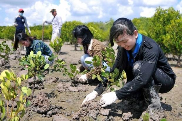 越德加强自然资源与环境领域的合作 hinh anh 1
