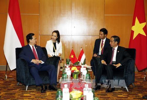 越南政府总理阮晋勇总理会见印尼总统和俄罗斯总理 hinh anh 1