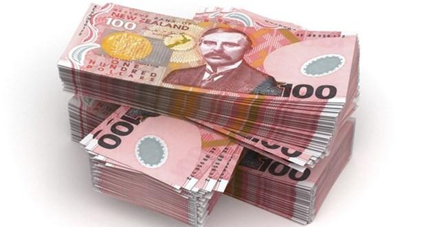 新西兰拟在东盟投资1.31亿美元 hinh anh 1