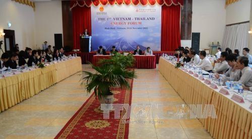 第一届越泰能源论坛在平定省开幕 hinh anh 1